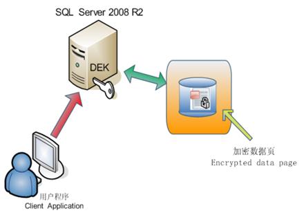 透明数据加密